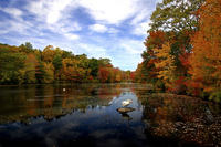 Youngs-Pond-Branford-Connecticut-by-slack12.jpg