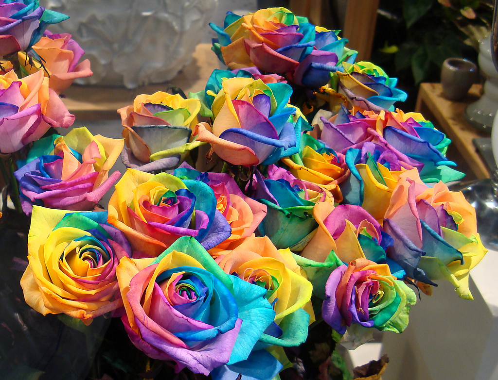 They look like a box of crayons had babies with a bunch of roses.