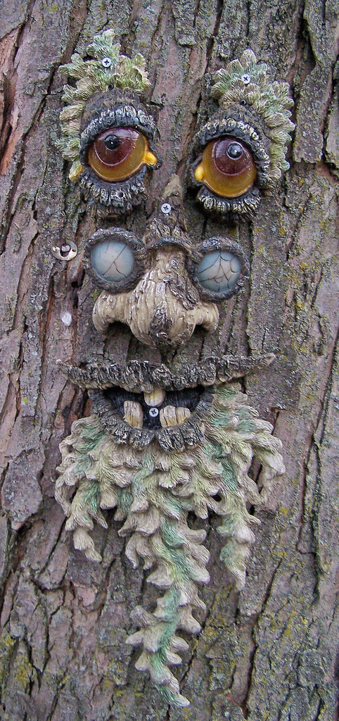 Photos  All The Best Tree Faces  U0026 Talking Trees For Halloween Props