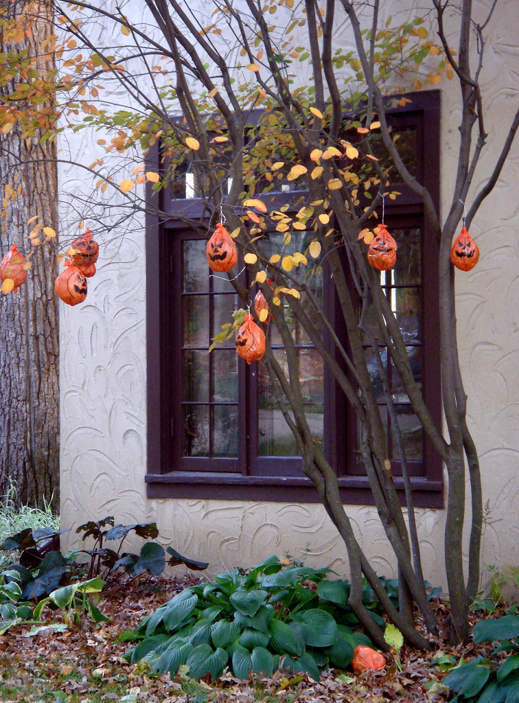 Halloween trees they 39 re more than just christmas trees for Outside house ornaments
