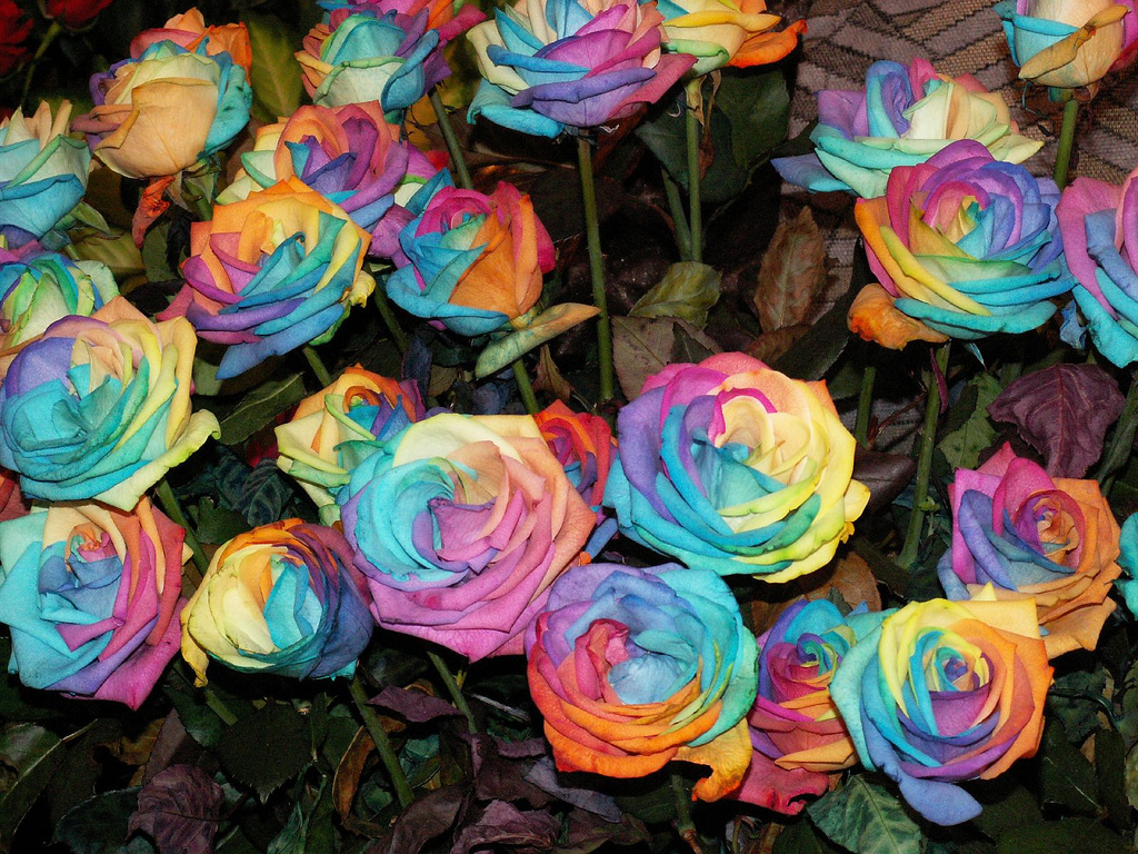 rainbow wedding decoration flower