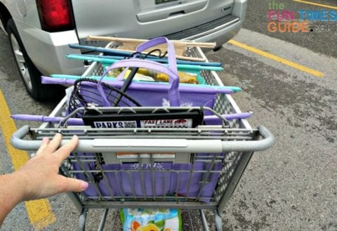 After my grocery shopping trip using the Lotus Trolley Bags.