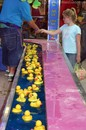 Rubby ducky carnival game.